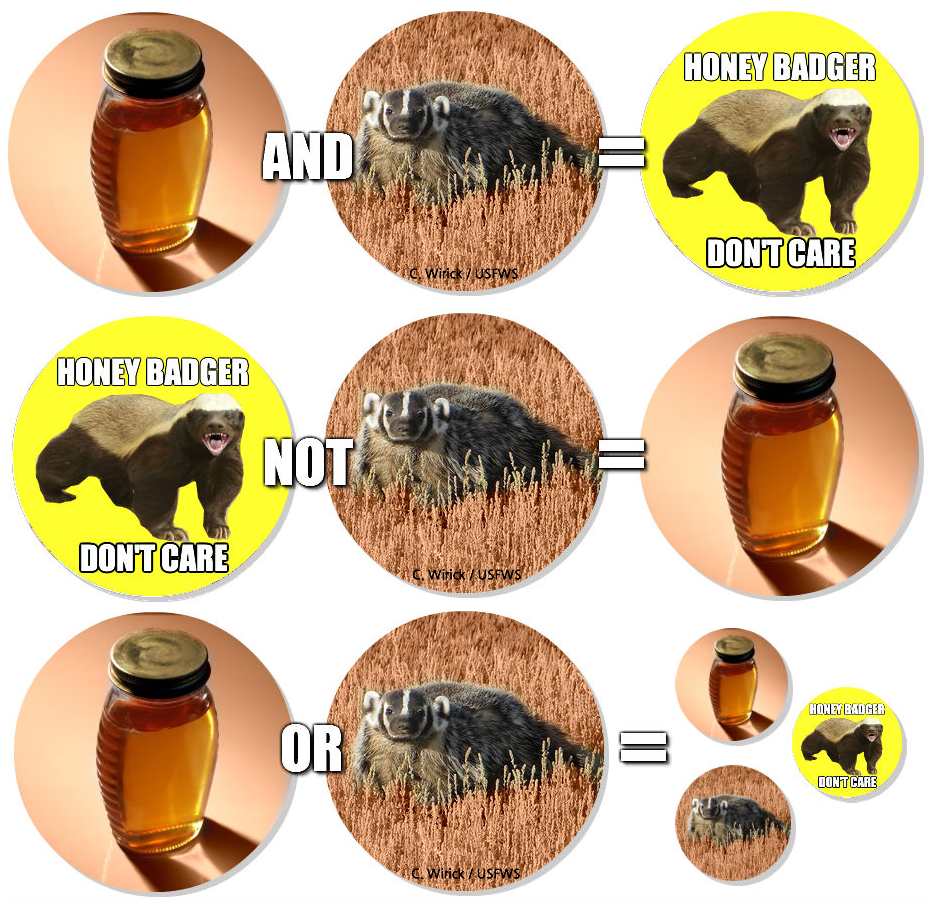 Boolean Honey Badger